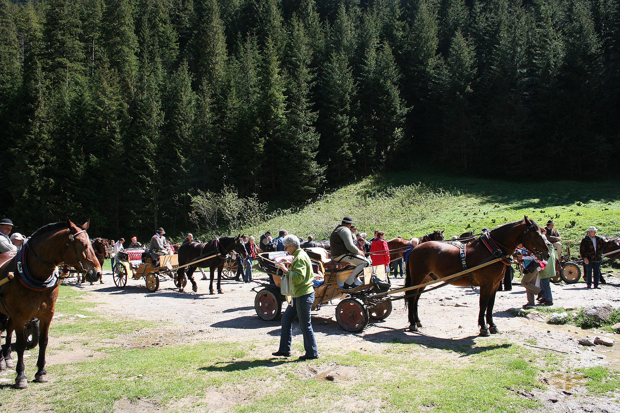 Zakopane, paardenkoets